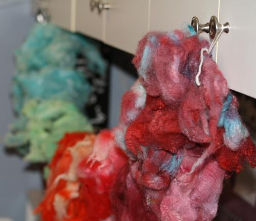 Some photos from our dyeing fleece experiments
