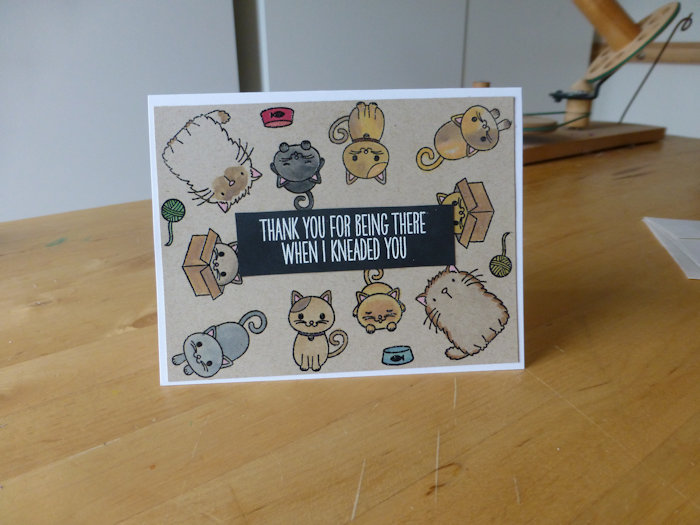 Cat Themed Note Cards