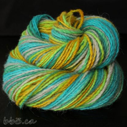 Handspun Yarn - Caribbean Dreams
