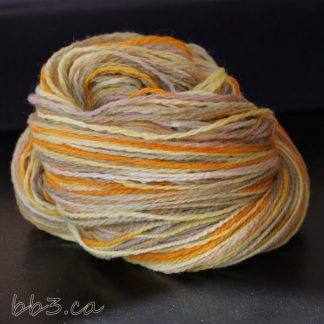 Handspun Yarn: Autumn Lane