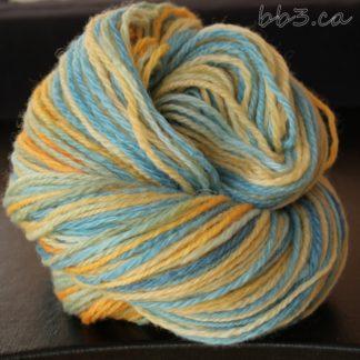 Handspun Yarn - Beachy Keen - 3 ply BFL