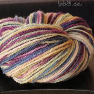 Handspun Yarn - Herbs and Wildflowers - 3 ply BFL